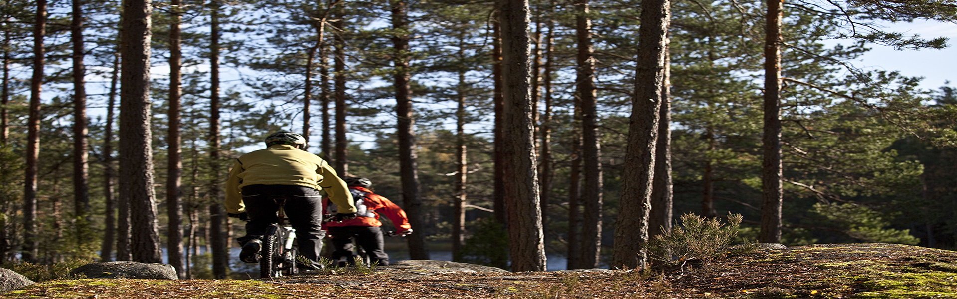 Kaksi maastopyöräilijää metsämaisemassa