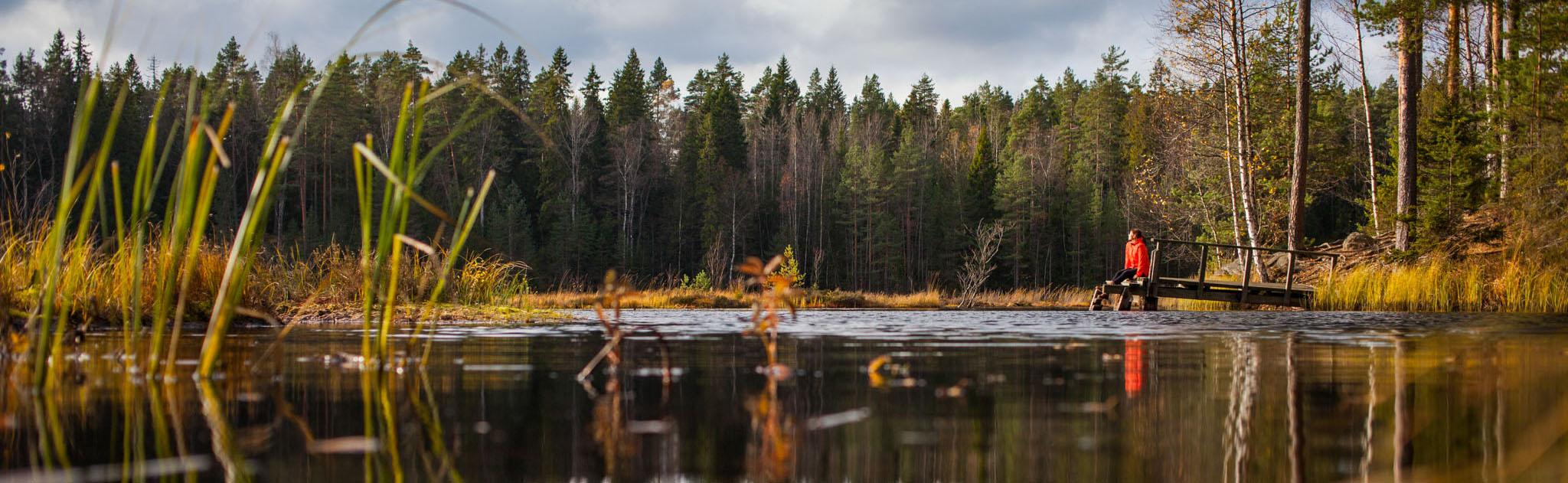 kuvituskuva: nainen istuu metsälammen rannalla