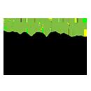 Vipuvoimaa EUsta logo